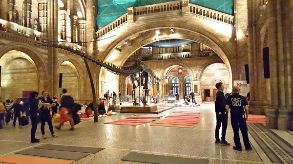 Dinosnores, Natural History Museum, Kids London