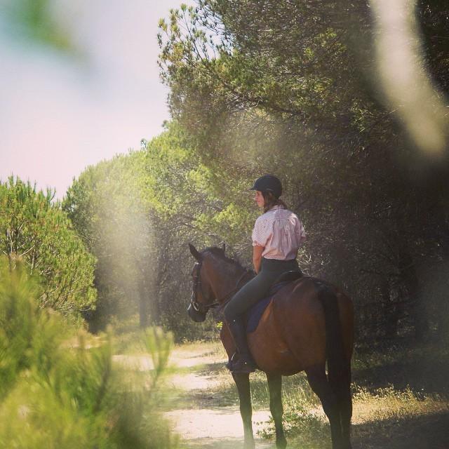 Pinetrees, Riding, Algarve, Portugal