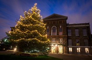 Kensington Palace, London, Museum, Christmas