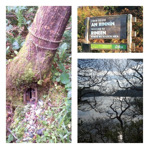 Fairies, Rineen Woods, West Cork
