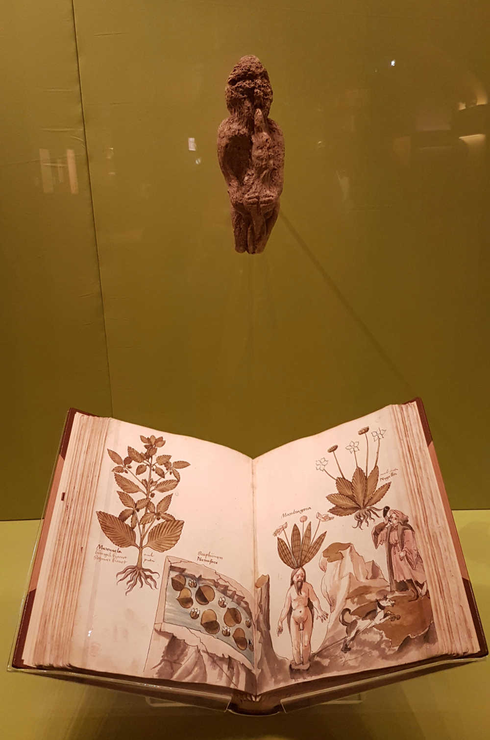 Harry Potter, British Museum, History of Magic, London
