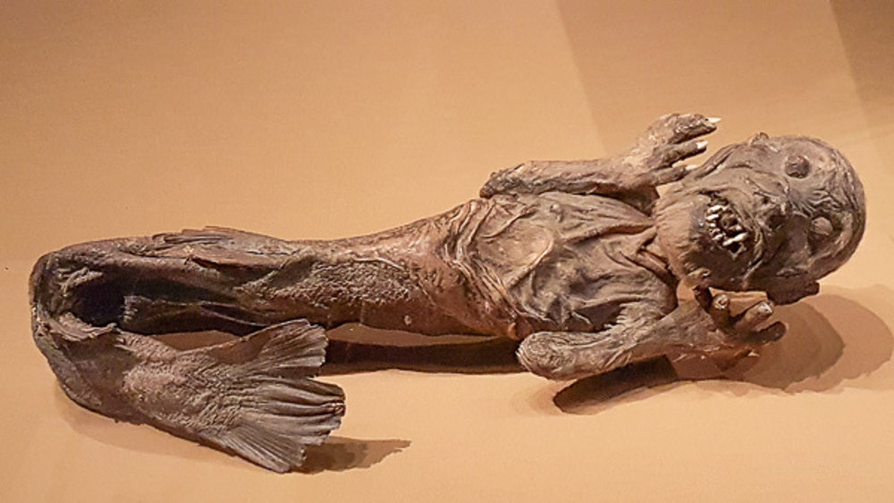 Резултат с изображение за mermaid of mermaid in british museum