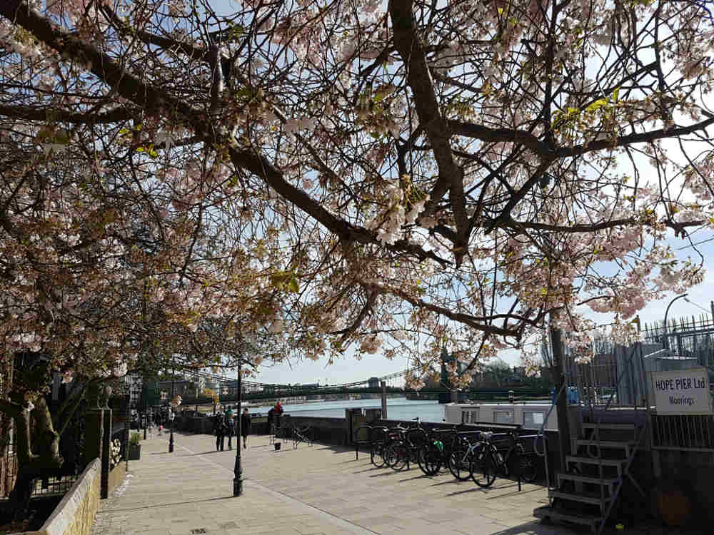 things to do in Hammersmith, riverside, Upper Mall
