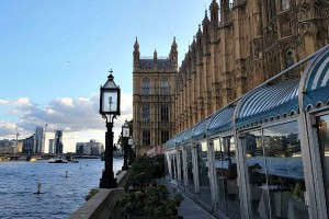 Afternoon Tea, Parliament, Houses of Parliament tour