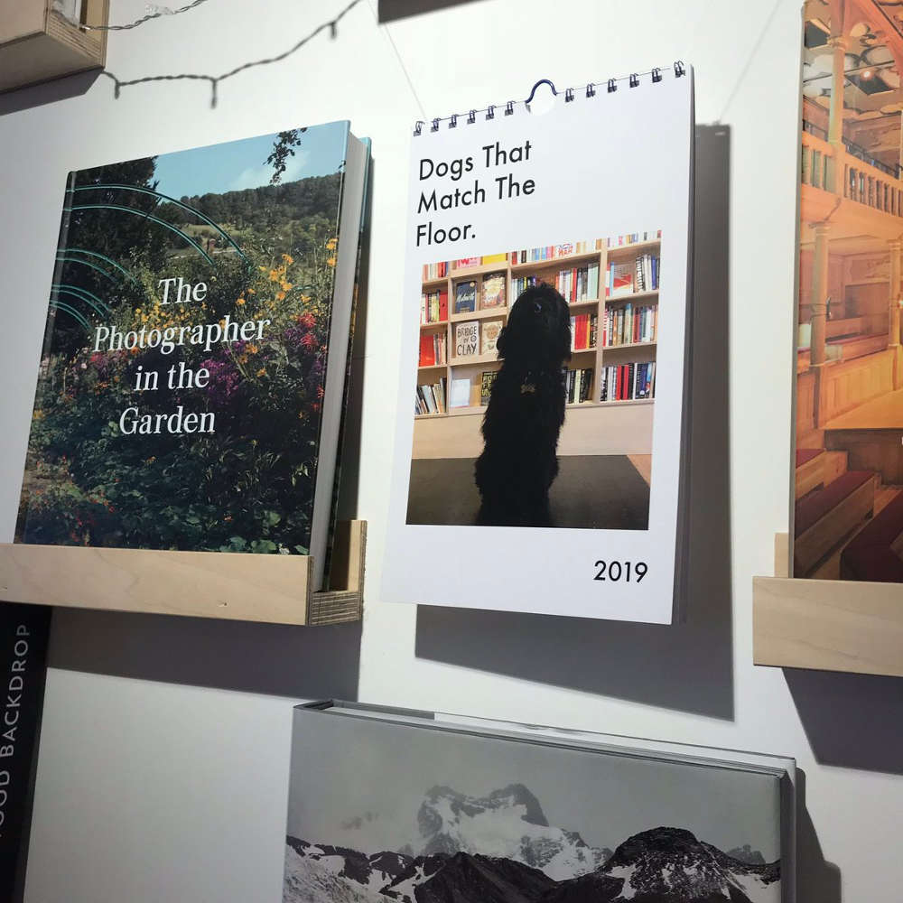 London's best bookshop cafes, dog-friendly bookshop London