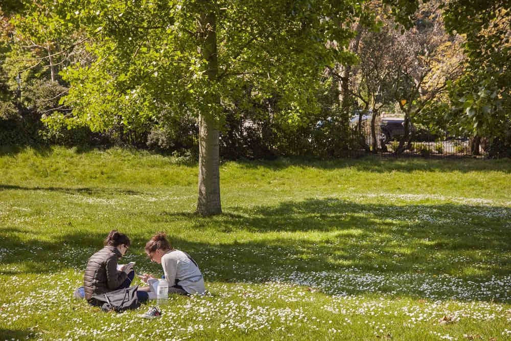 London's best picnic spots