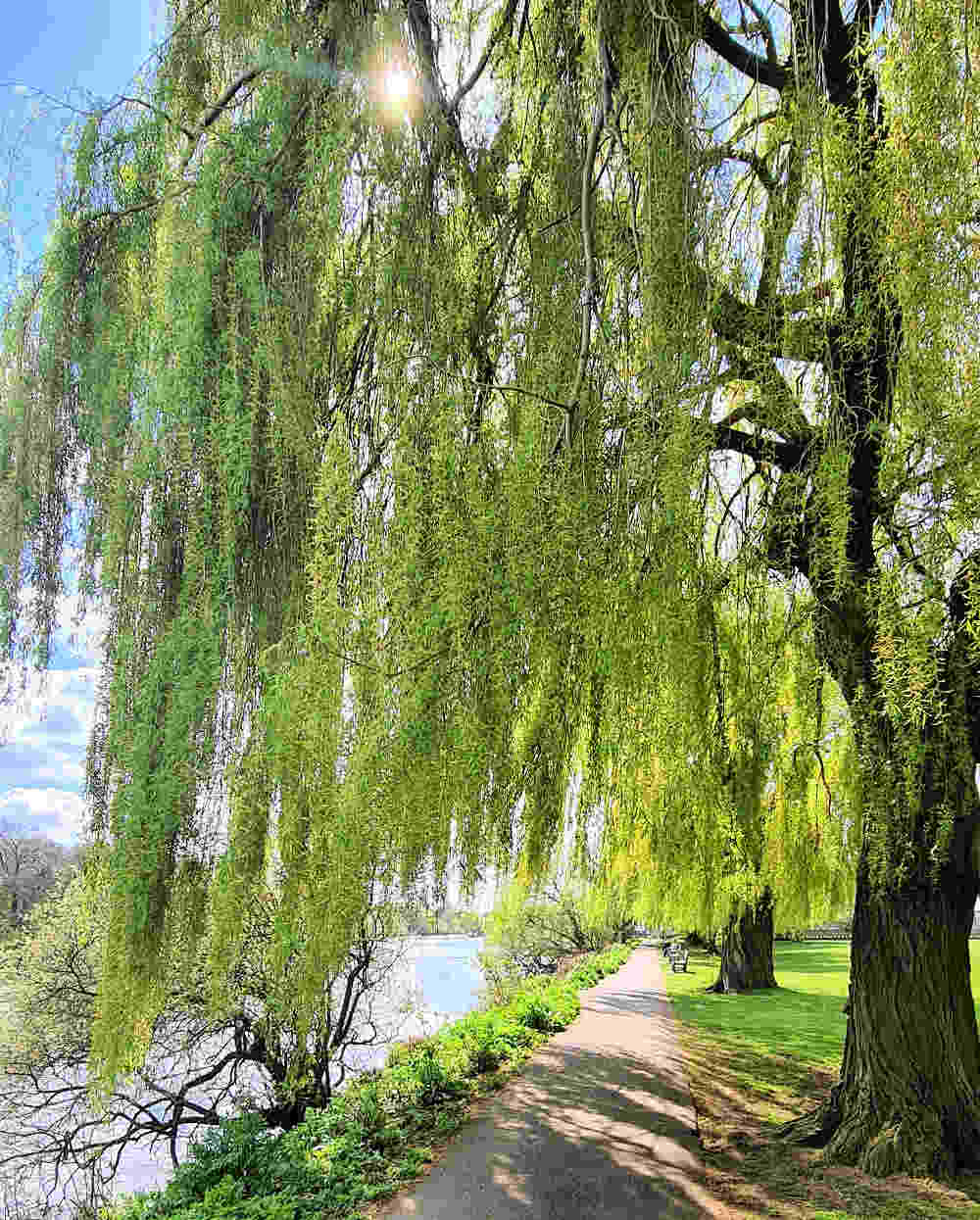Strawberry Hill Historic Garden Tour